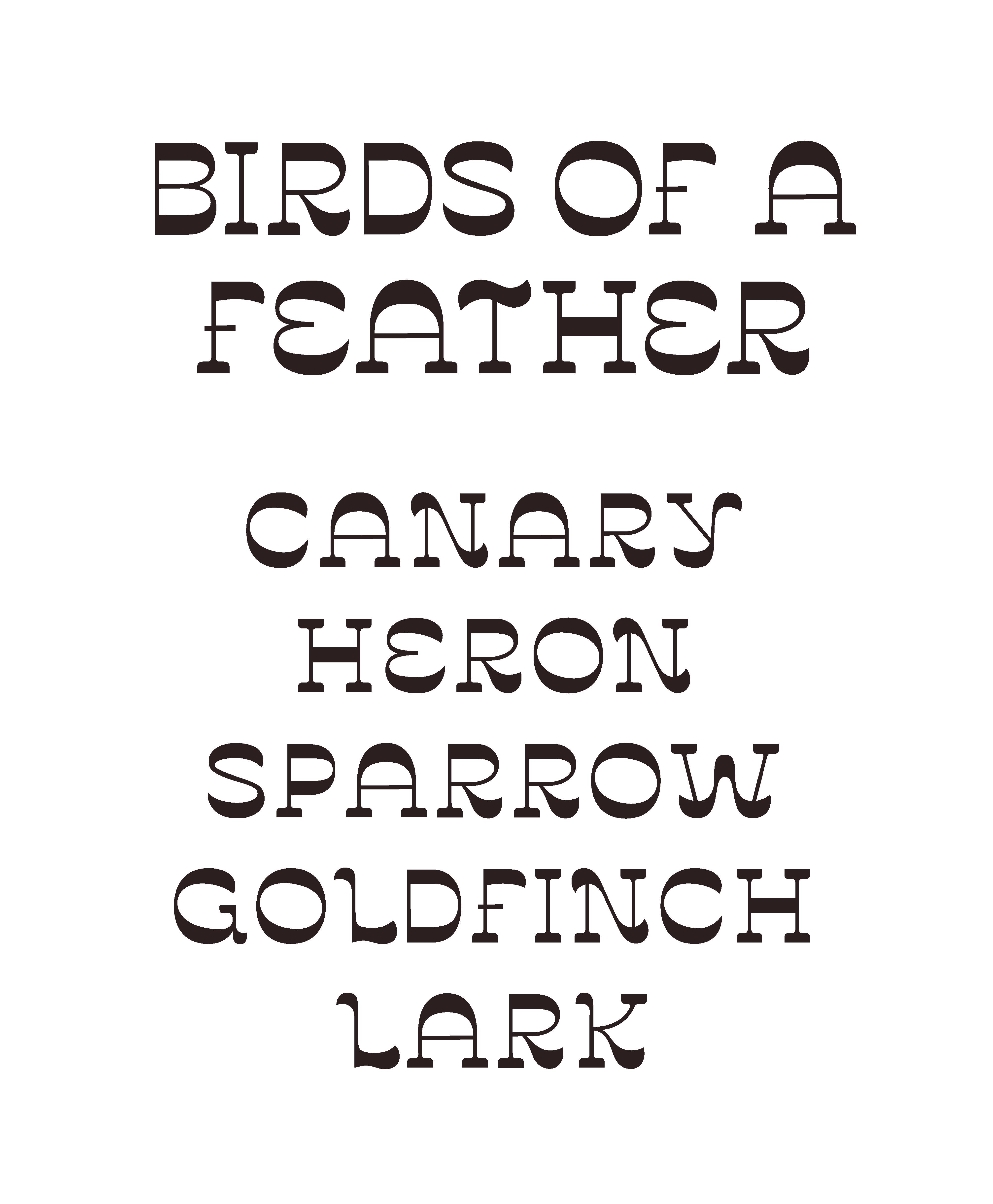 specimen_birds-text